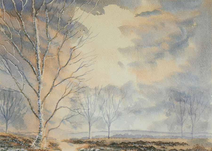 Winter Trees by Paul Clarke