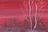 Winter Birch by Paul Clarke