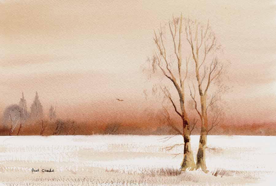 Snow Field by Paul Clarke