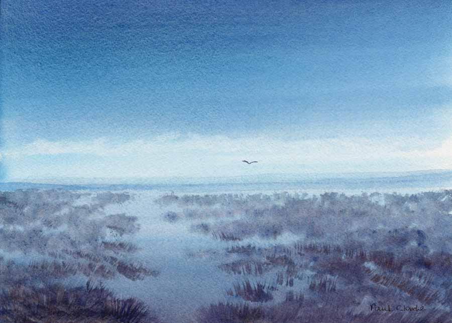 Wetlands by Paul Clarke